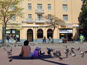 duiven voeren San José Rica