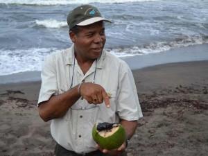 gids-kever-costa-rica-reis