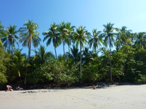 strand-costa-rica-rondreizen