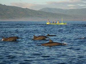 Ojochal Costa Rica met kinderen - dolfijnen spotten