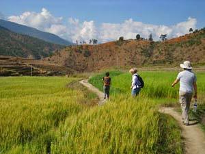 bhutan wandelen