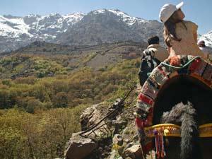 Marrakech Imlil ezel wandeling