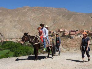 imlil-tocht-kinderen ezel