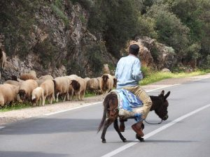 reis-marokko-ezel