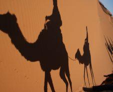 Op hoge poten door de woestijn