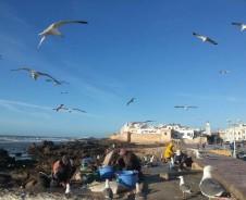 Knus aan de kust