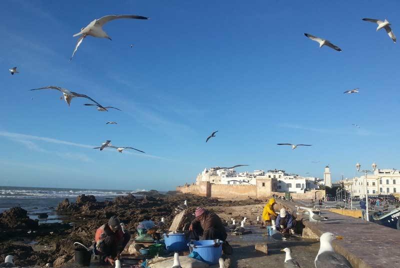 Essaouira Marokko kids - aan de kust