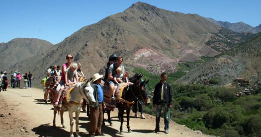 Marokko rondreizen: bergen