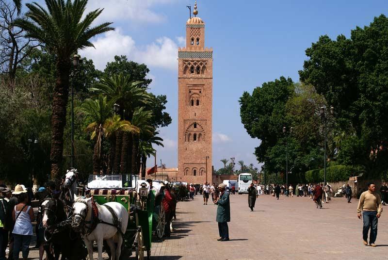 Marrakech reis met kinderen