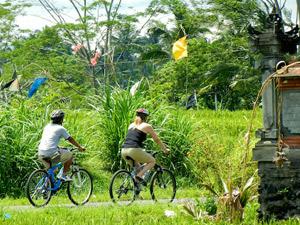 gezinsvakantie bali sawa fietsen