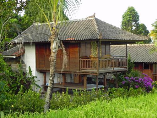 Special Stay Lovina Bali - huisje