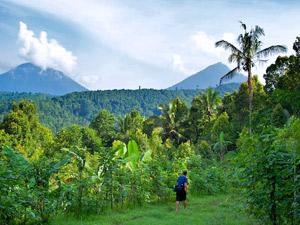Plantage Munduk Bali - kinderen