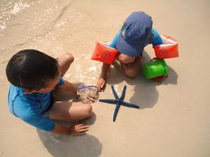 Bali strand Indonesië - zeester met kinderen