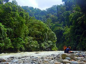 sumatra-jungle-rivier