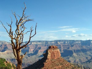 reis grand canyon amerika