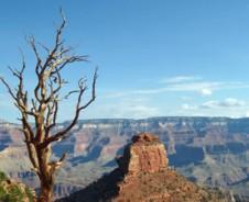 De canyon experience