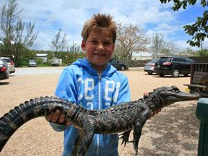 Florida met kinderen -alligator