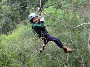 Tsitsikamma National Park boomtop slingeren