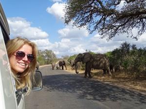 Rijden door Kruger tijdens je fly drive Zuid-Afrika