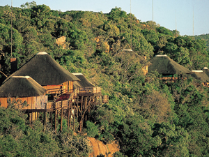 big five lodgepark zuid afrika