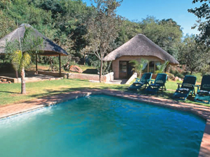 big five pool zuid afrika
