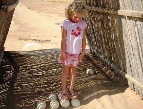 zuid afrika struisvogel eitjes