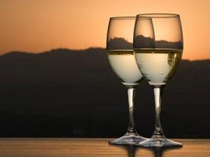 fietsen wijn glazen zuid afrika