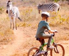 Wild op wielen