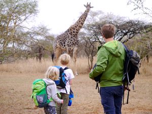 giraf spotten tijdens je Zuid-Afrika familiereis