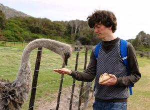 Voer struisvogels tijdens jullie Zuid-Afrika gezinsreis