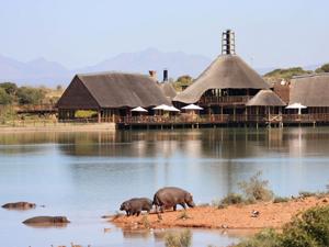 safari west kaap zuid afrika