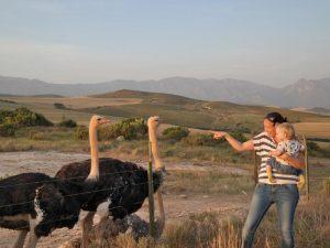 struisvogels-zuid-afrika-met-kinderen