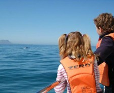 Ahoy! walvis in zicht