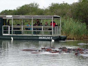 zuid-afrika-vakantie-met-kinderen-hippos