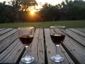 zuid-afrika-vakantie-met-kinderen-wijn