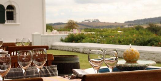 Wijn proeven Zuid-Afrika reis