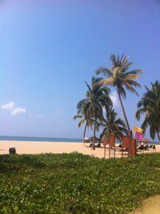 China Reise strand Hainan