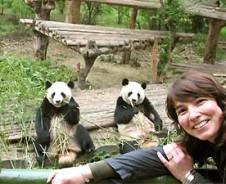 Pandas und Teehäuser