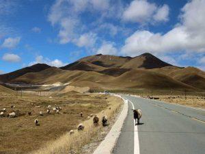 Straße von Xiahe nach Langmusi