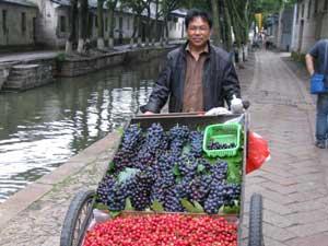 frisches Obst wird hier und da angeboten