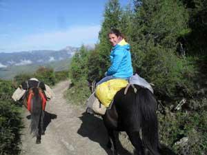 Zu Pferd zum Ice Mountain