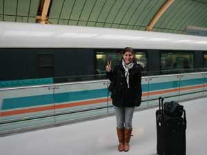 Reisende vor einem Zug in Beijing