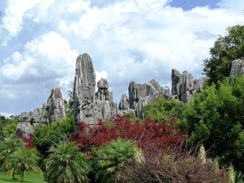 Südchina Ausflüge: Kunming Steinwald