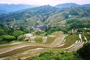 Reiseberichte China