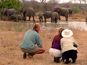 Zuid-Afrika online bouwstenen - Kruger wandelsafari