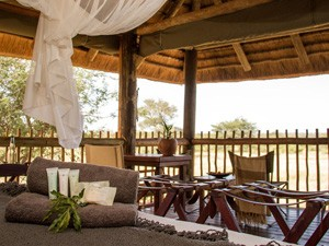 safari-ervaring - uitzicht vanuit je chalet bush op z'n best