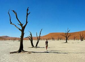 Zuid-Afrika combineren met Namibië