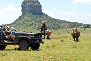 Pilanesberg game-drive - Zuid-Afrika reizen