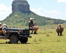 Baie plesier op safari