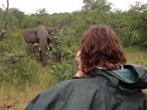 Vakantie Zuid-Afrika - foto's maken